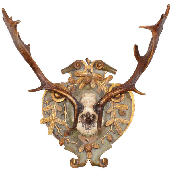 19th c Habsburg Fallow Hunt Trophy with Original Wappen from Austria