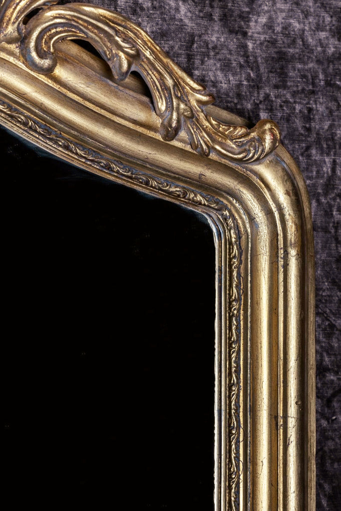 French Renard Hand-Carved Beveled Mirror in Hand Gilt Frame