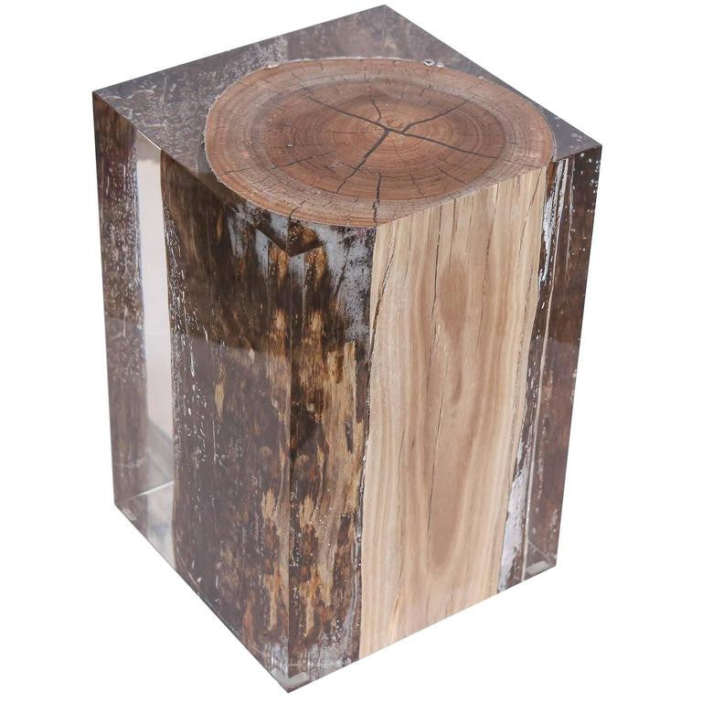 Acrylic & Driftwood Nilleq Side Table and Stool