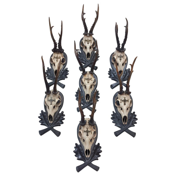 19th Century European Mount Bavarian Roe Deer Trophies on Black Forest Plaques