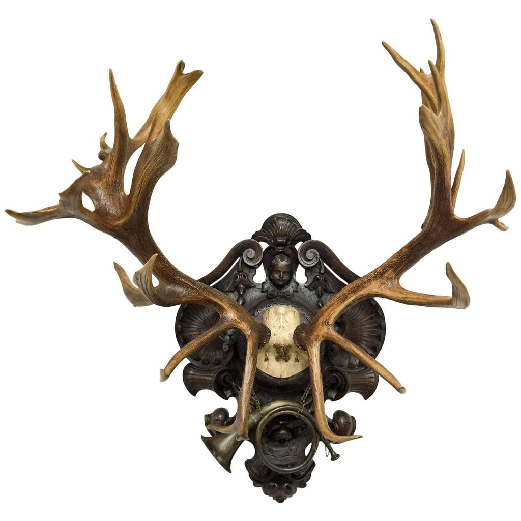 19th Century Red Stag Trophy of Ludwig II of Bavaria with Original Hunt Horn