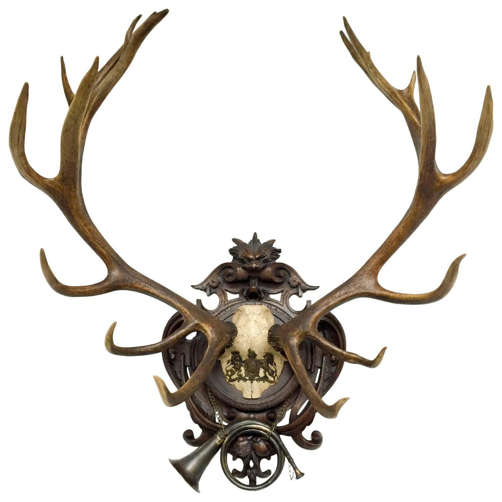19th C. Red Stag Trophy from Kaiser Wilhelm's Eulenburg Hunt with Hanovarian Crest