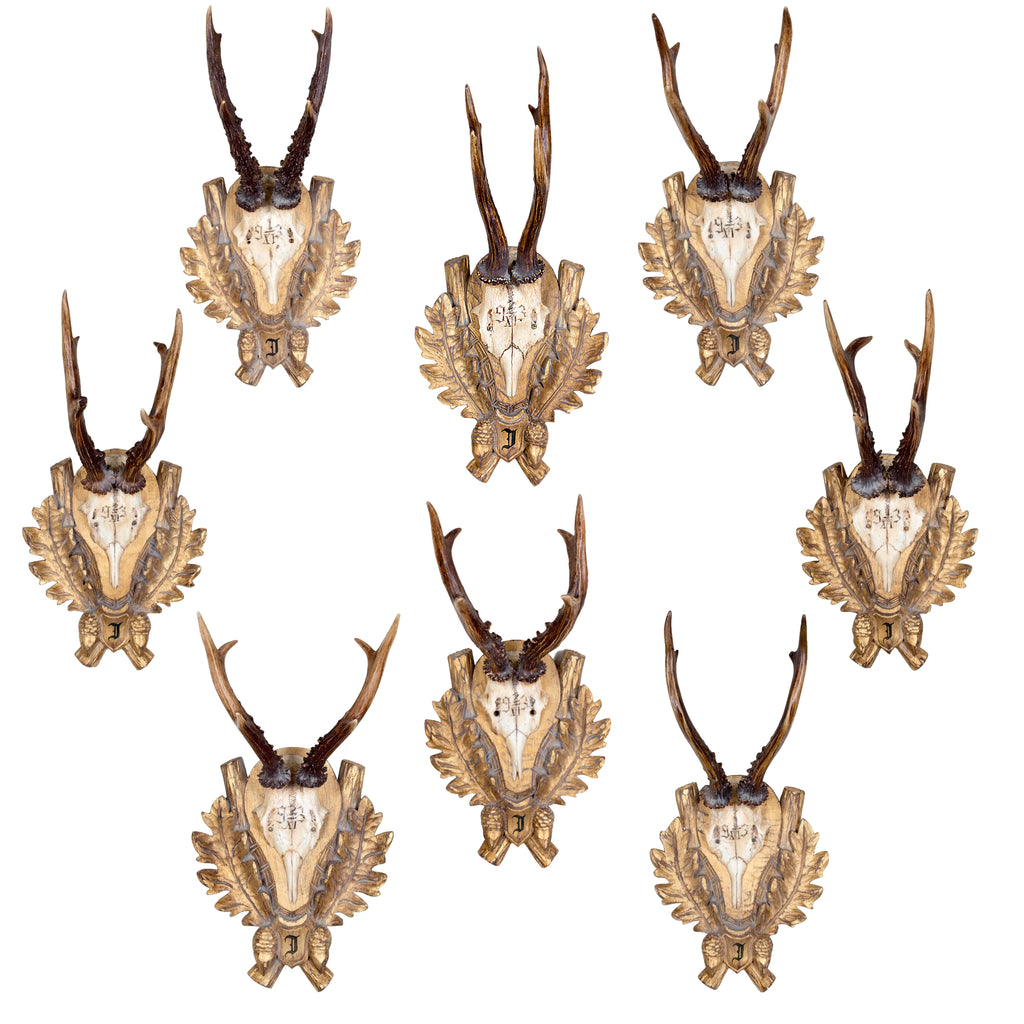 19th Century Roe Trophies of Emperor Franz Josef from the Kaiservilla, Bad Ischl, Austria