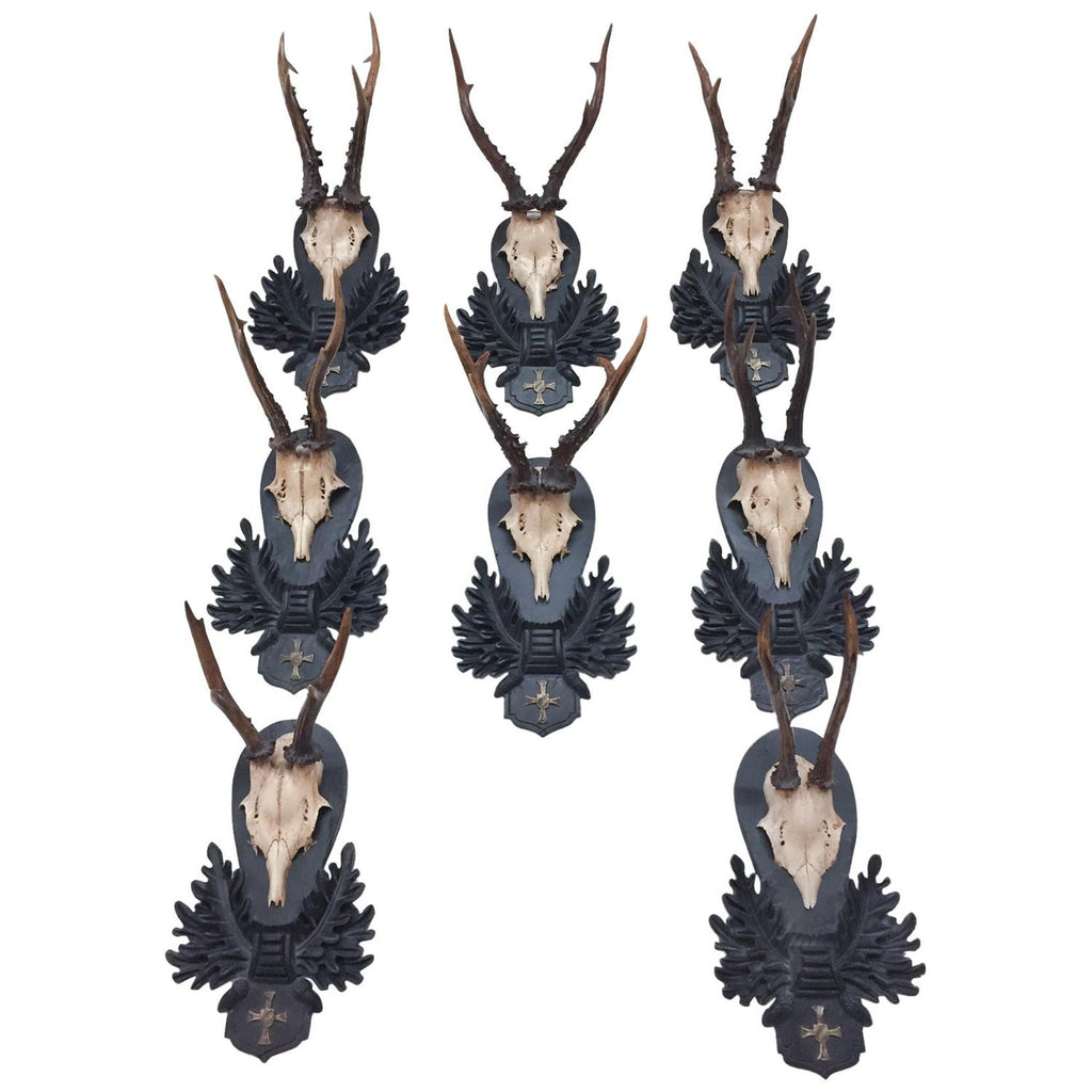 Bavarian Roe Deer Trophies on Black Forest Plaques with Bavarian Cross