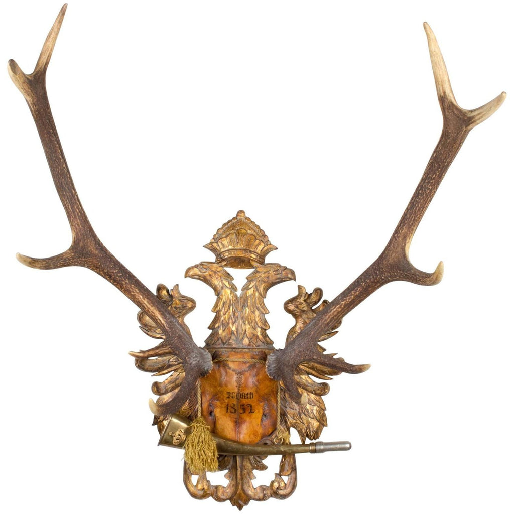 19th c Austrian Red Stag Trophy on Gilt Eagle Plaque with Original Hunt Horn