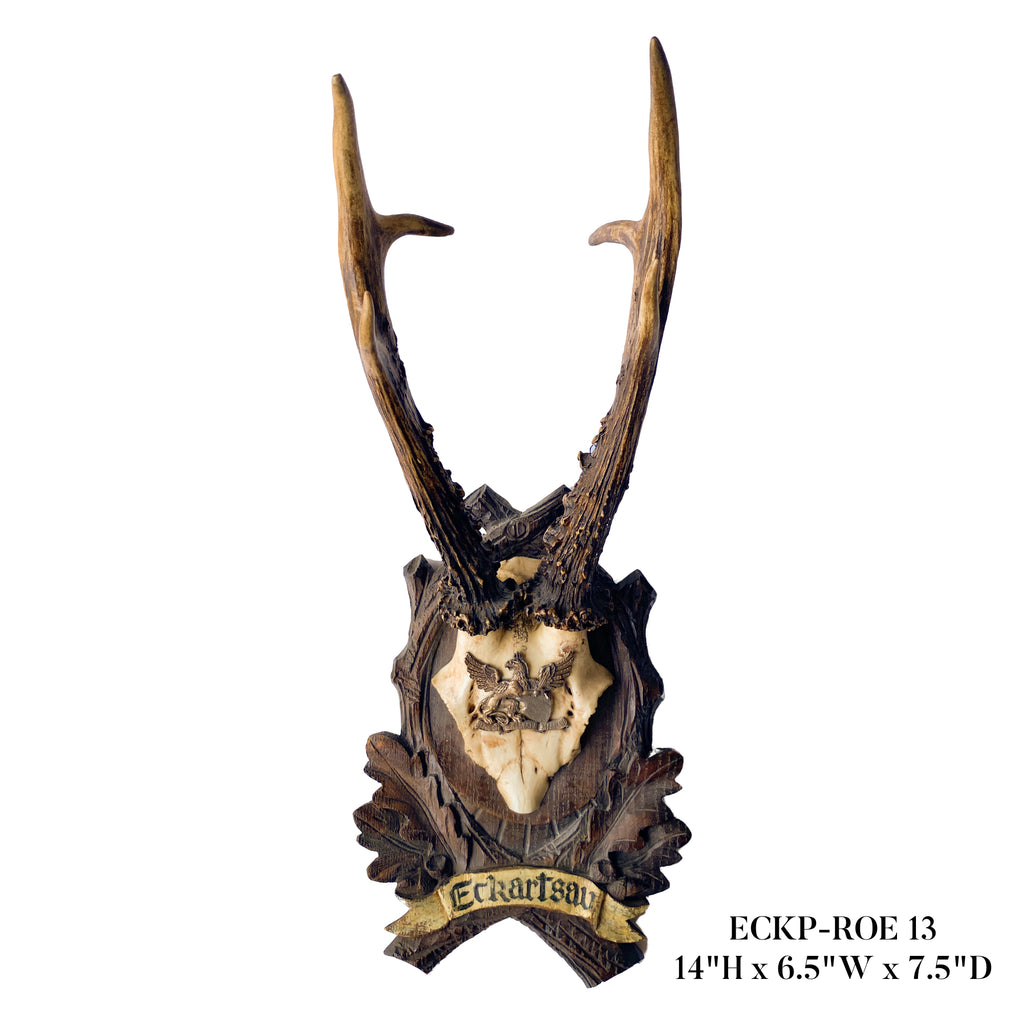 19th c Habsburg Roe Deer Trophies on Black Forest Plaques from Eckartsau Castle