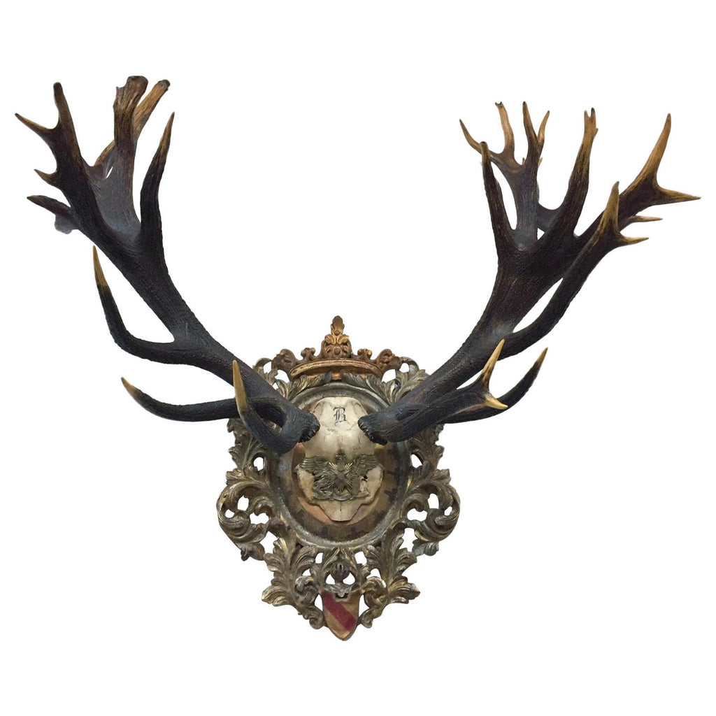 Antique Red Stag Trophy of The Grand Dukes of Baden on Ornate Gilt Plaque