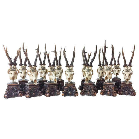 19th Century Roe Deer Trophies from the Grand Dukes of Baden on Stands