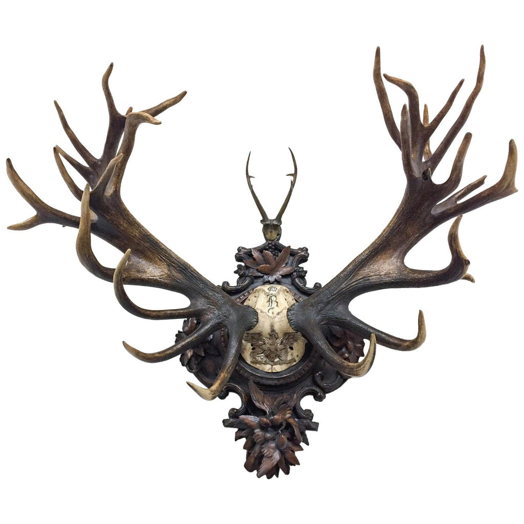 Grand Dukes of Baden Red Stag Trophy on Hand Carved Black Forest Plaque