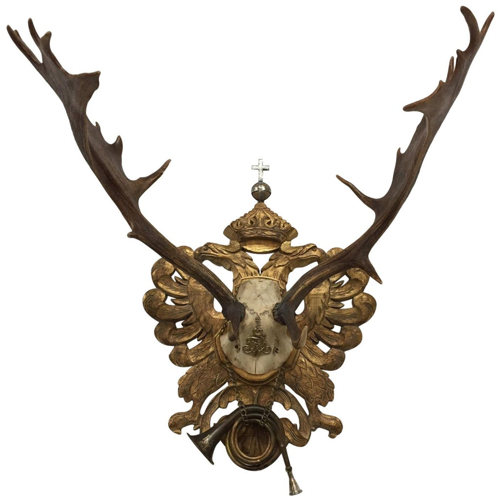 Habsburg Fallow Trophy on Hand Carved Gilt Plaque from Eckartsau Castle