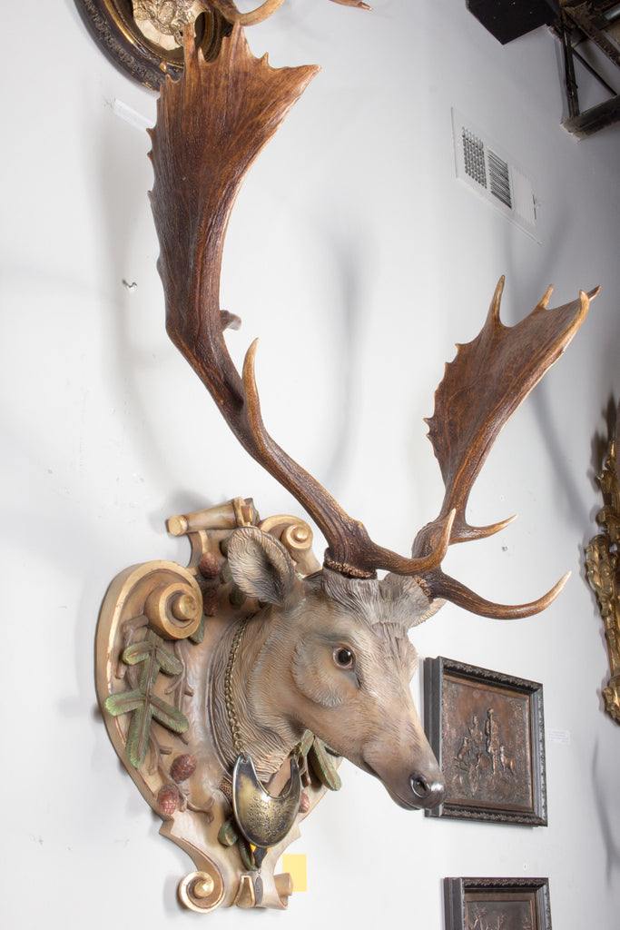 Hand-Carved Fallow Deer with 19th C. Habsburg Antlers from Eckartsau Castle Austria (Pair Available)