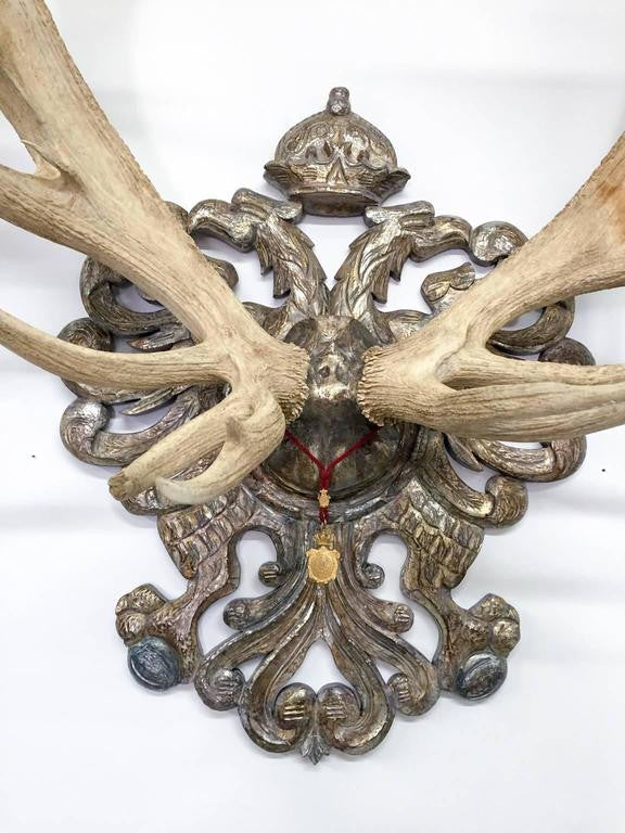 19th c. Habsburg Red Stag Trophy from Emperor Franz Joseph's Castle at Eckartsau