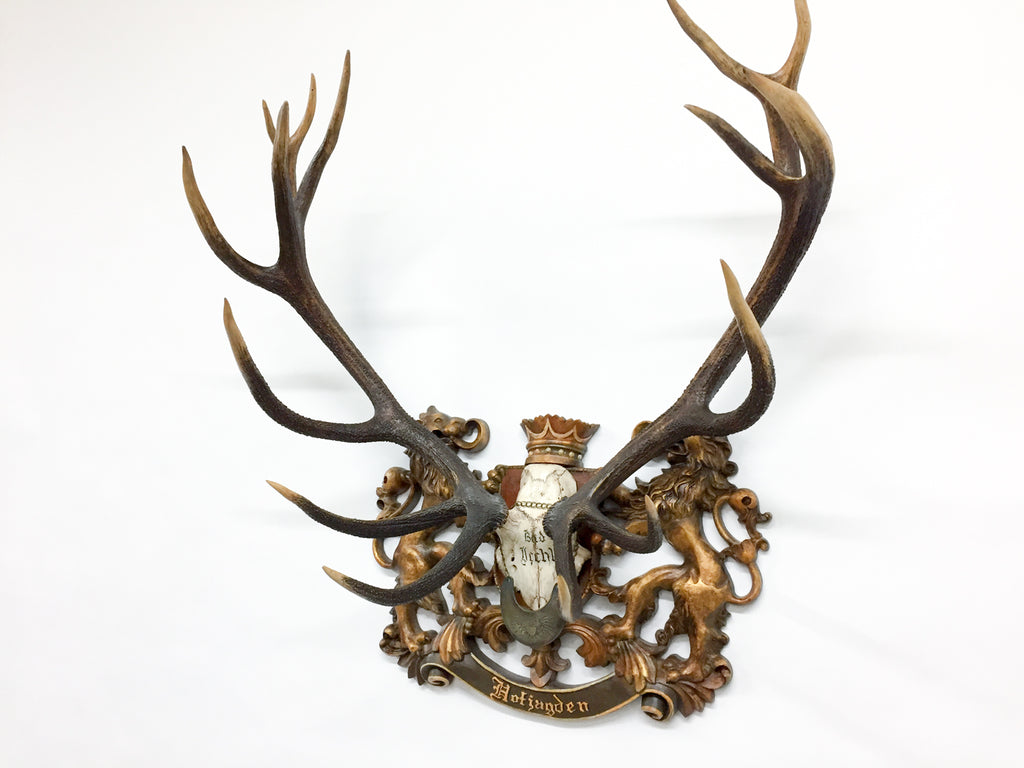 "Austrian ""Hofjagden"" Red Stag Trophy with Habsburg Gorget and Veterans Badge from Bad Ischl"
