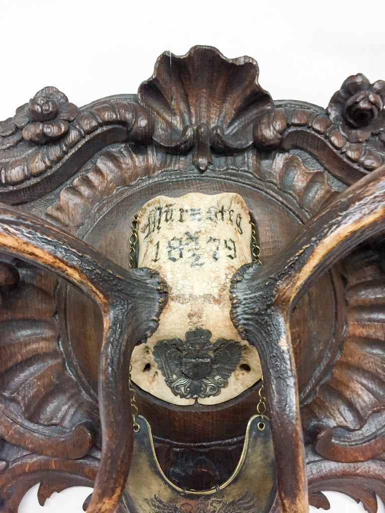 Habsburg Fallow Trophy on Original Plaque with Austro-Hungarian Gorget & Veterans Badge