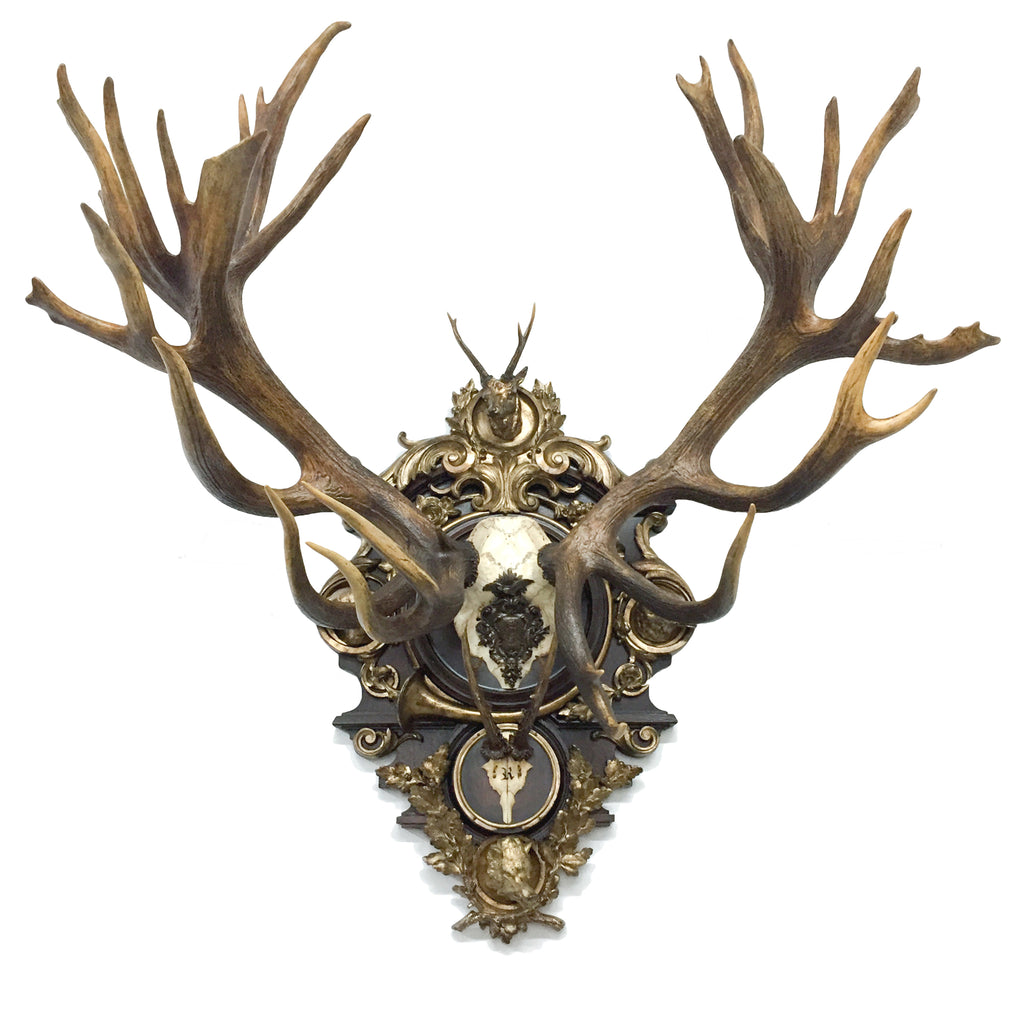 19th c. Austrian Rothschild Red Stag & Roe Deer Trophy