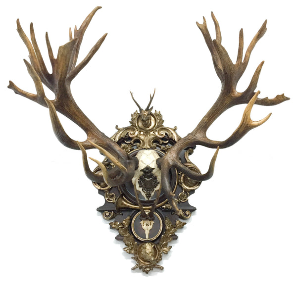 19th c. Austrian Rothschild Red Stag & Roe Deer Trophy from Bad Ischl, Austria