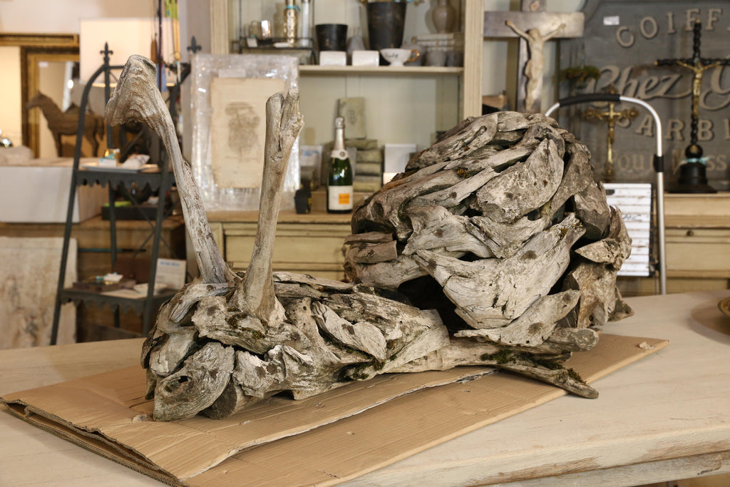 Large Antique Driftwood Snail Sculpture Found in Belgium