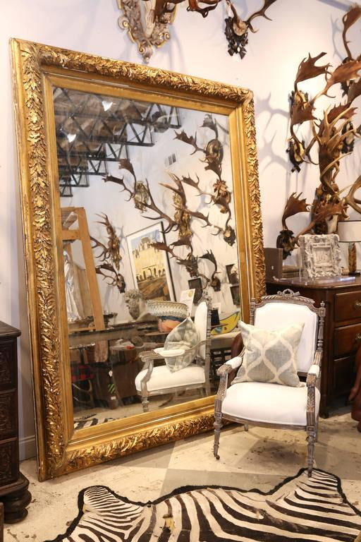 Large Antique French Carved Gilt Floor Mirror with Oak Leaf Detail