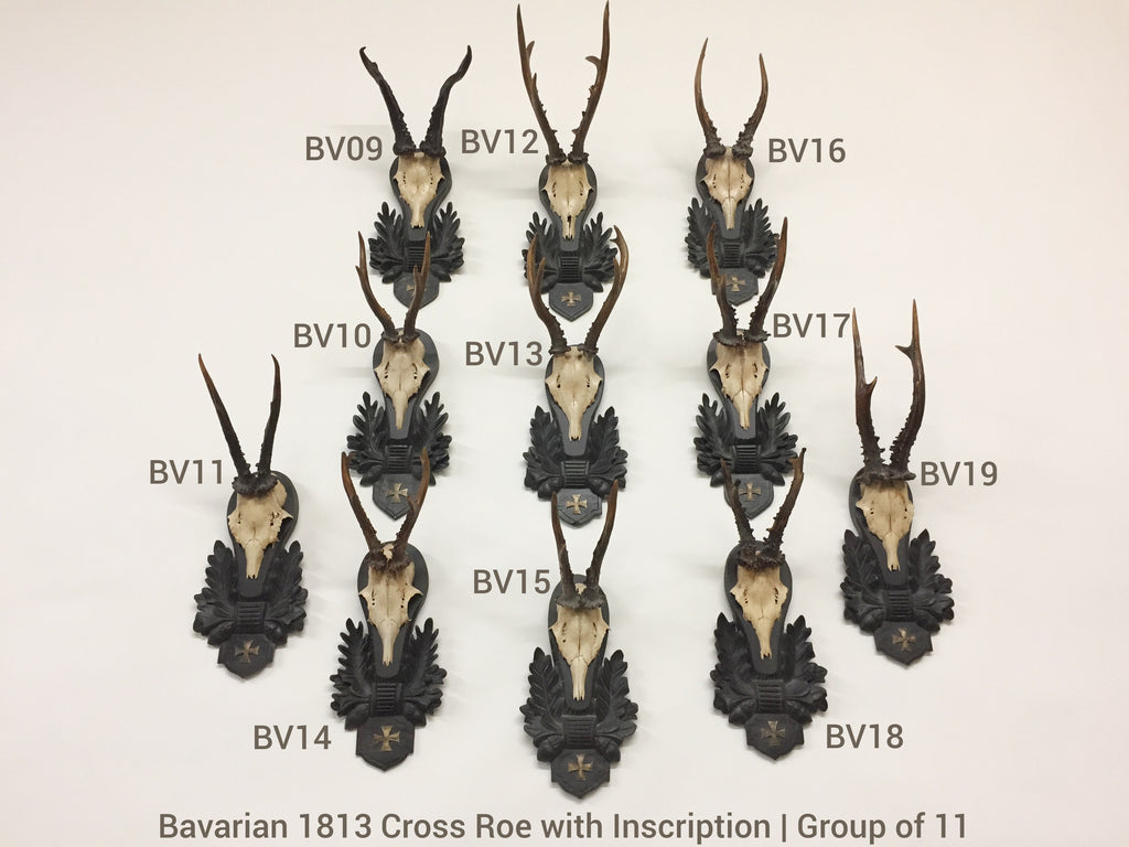 19th c Bavarian Roe Deer Trophies on Black Forest Plaques