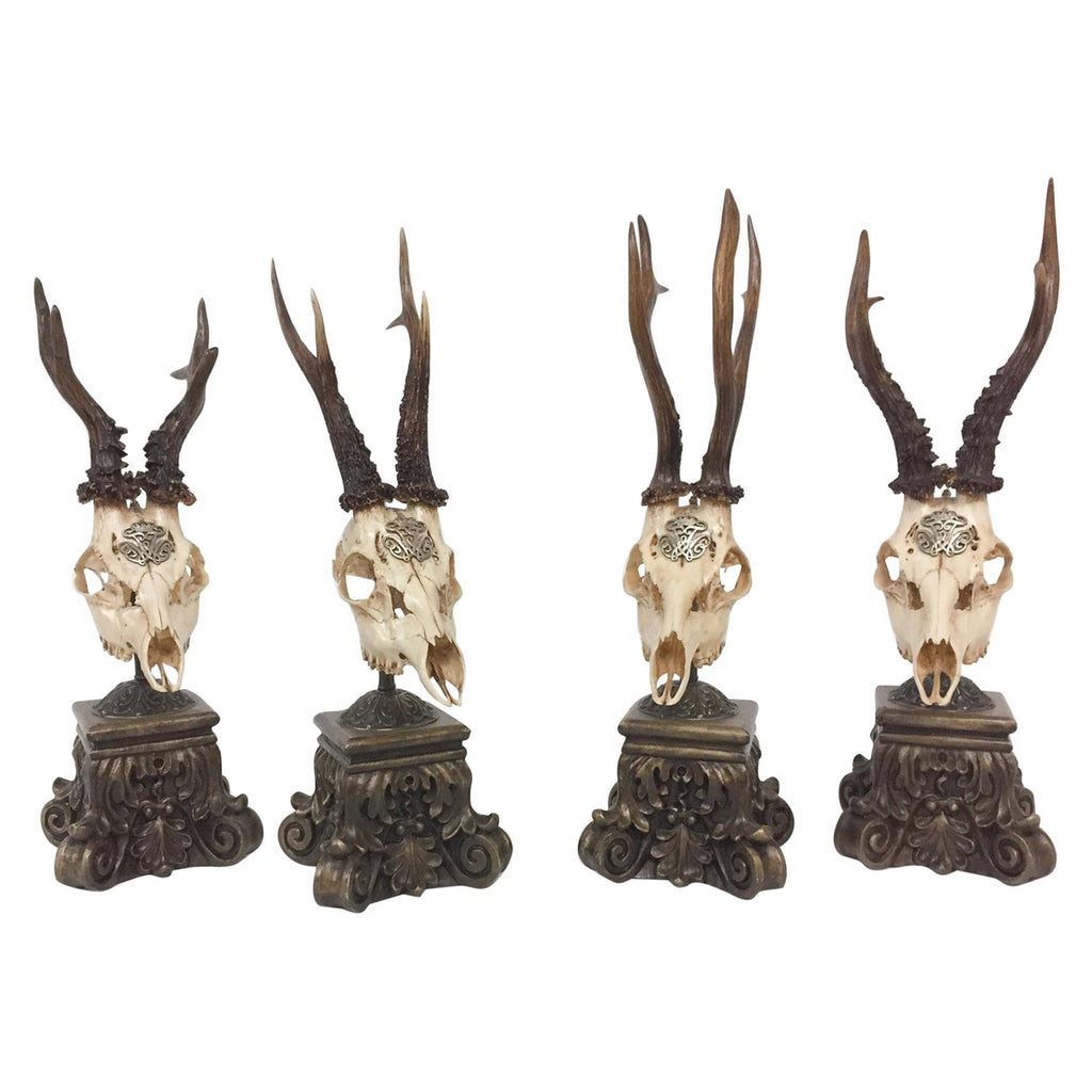 19th Century Roe Deer Trophy from Kaiser Wilhelm I of Germany on Stand