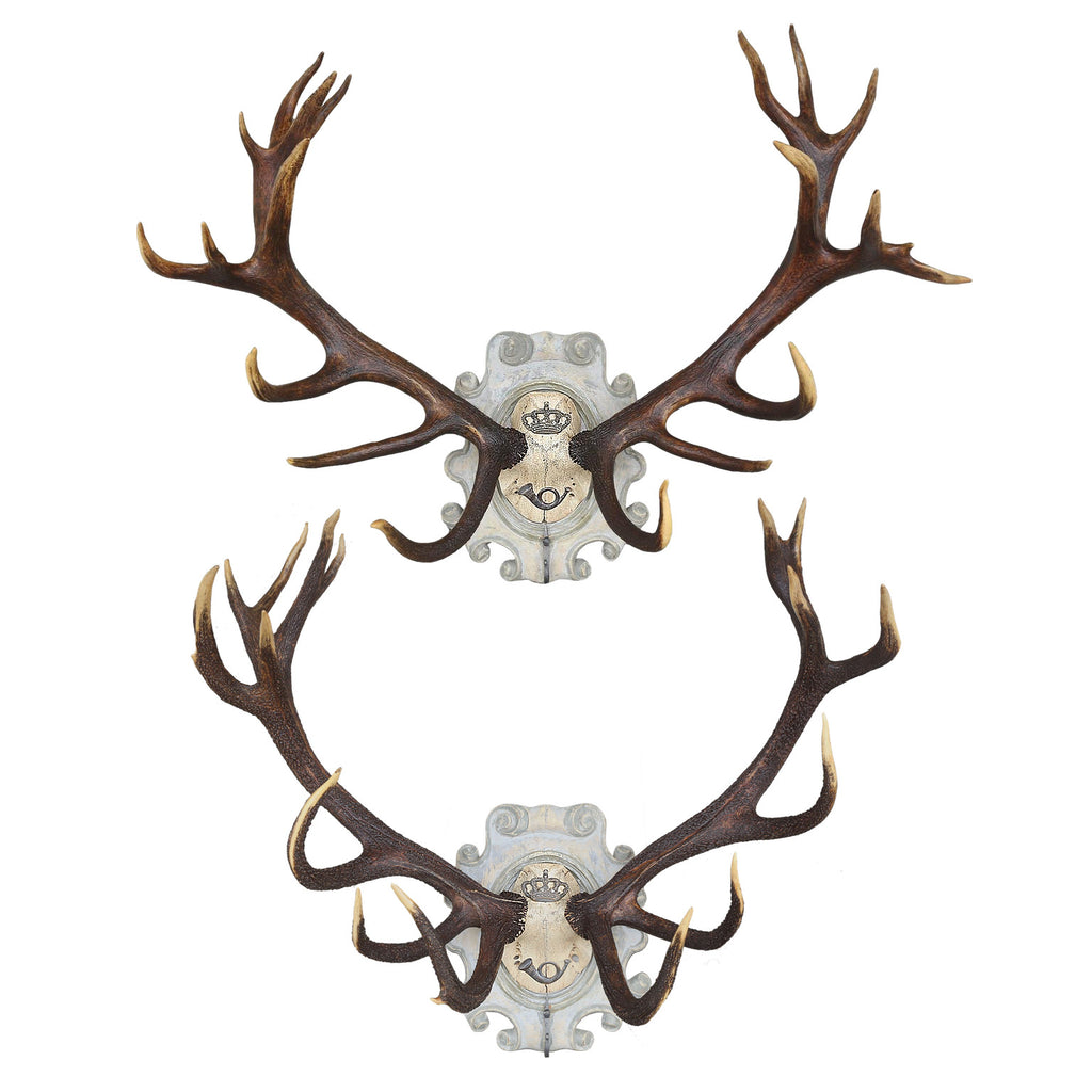 19th Century Habsburg Stag Pair with Iron Hook, Set of 2