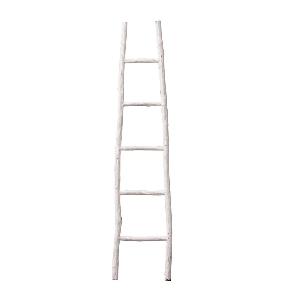 Decorative Wood Ladder in White