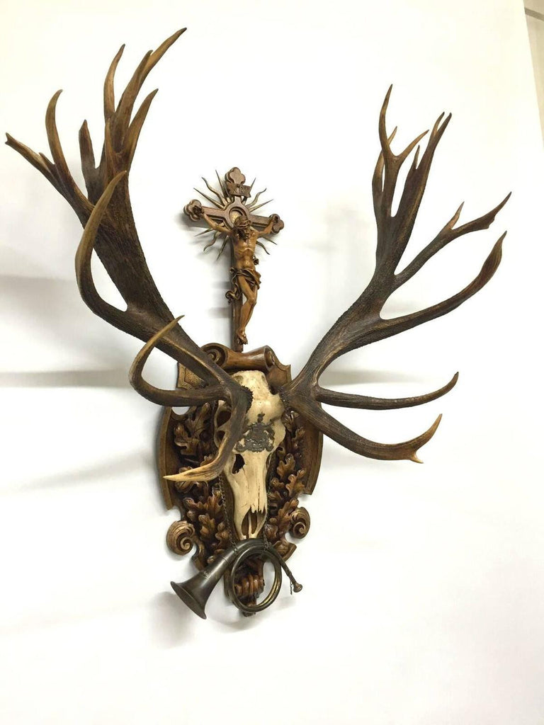 19th Century St. Hubertus Red Stag Hunting Trophy with Fürst Pless Horn
