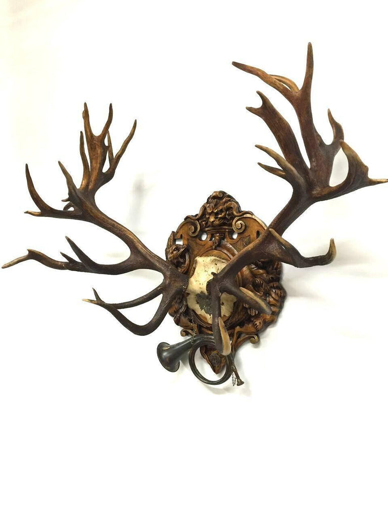 19th Century Red Stag Hunt Trophy from Kaiser Wilhelm II's Eulenburg, 1892