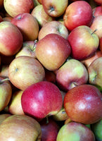 Rindgen Farm Apples