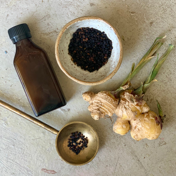 Seasonal Support: Elderberry Syrup Recipe