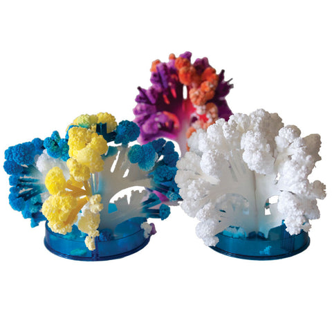 Coral Reef Crystal Growing Terraforming Kit