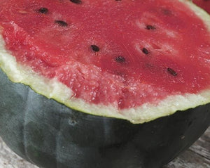 Sugar Baby Bush Watermelon