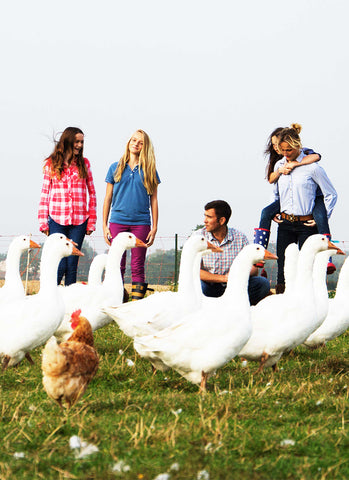 Meet our Free-Range Goose Farmer