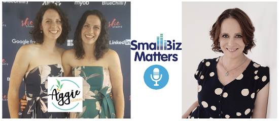 Radio Talk & Podcast with Small Biz Matters