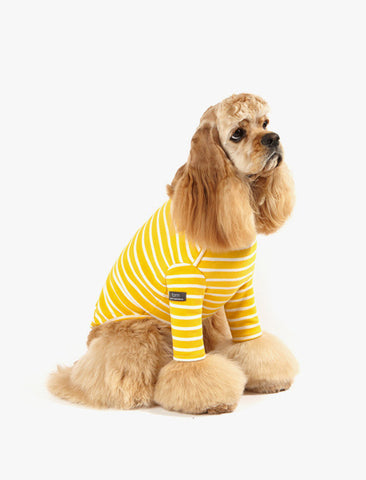 [Dentists Appointment] 3/4 Sleeve T-shirt Yellow & White Stripe