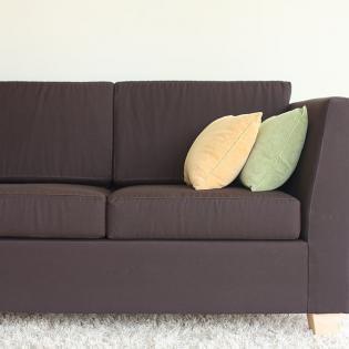 Can you picture yourself lounging on an all-natural, organic sofa?