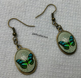 Butterfly Dangle Earrings - KLH Collection - 2