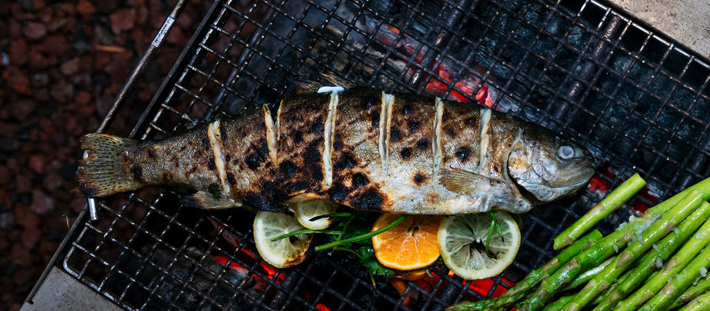 Grilled Trout on Takibi Fire & Grill