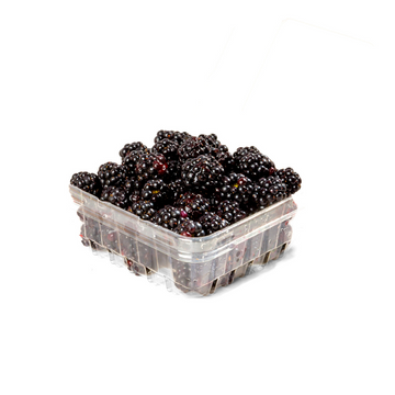Blackberries (1 Clamshell)