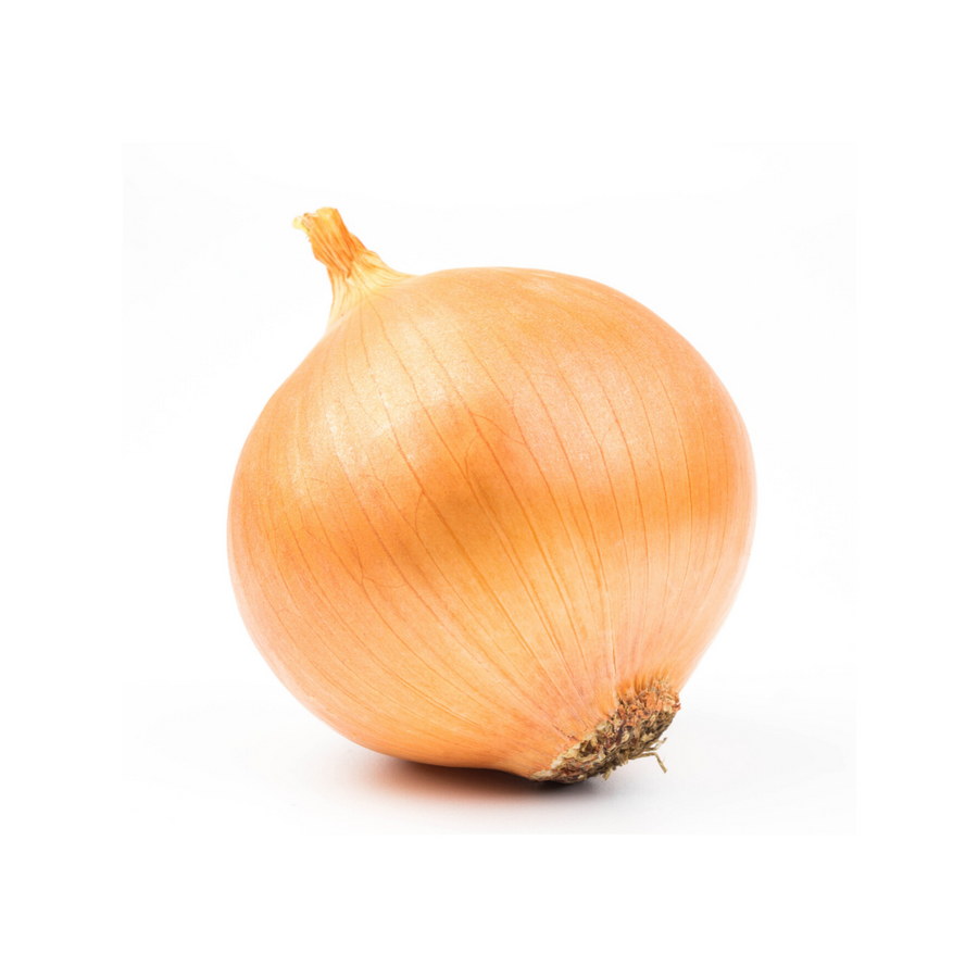 Jumbo Yellow Onion (1 Each)