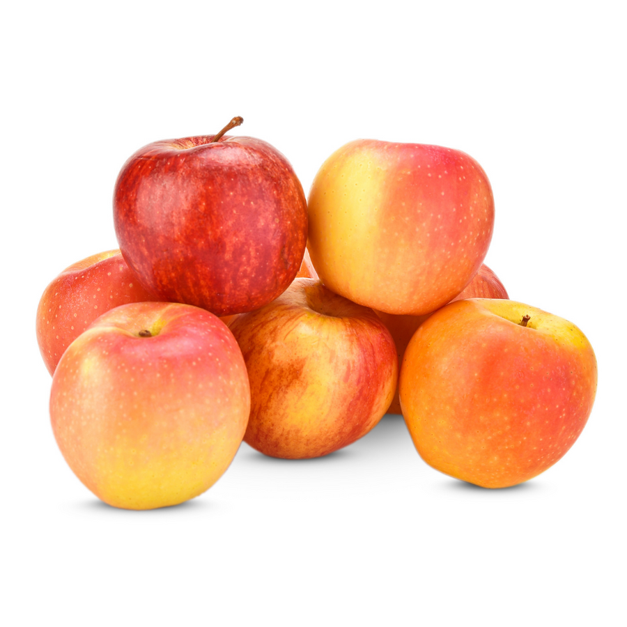 Ambrosia Apple (1 Each)