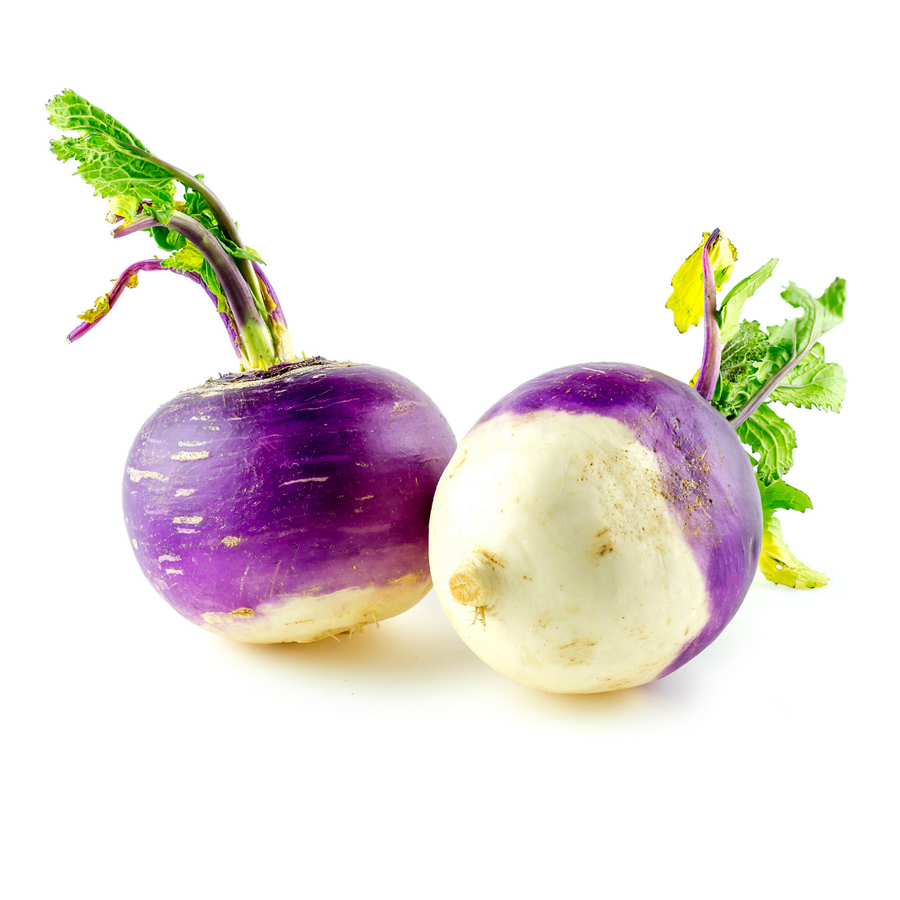 BC - Purple Top Turnips (1 Each)