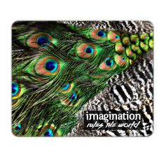 Imagination Rules the World Mouse Pad