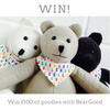 WIN £100 WORTH OF GOODIES FROM BEARGOOD!