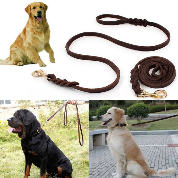 The Ready TO GO Special Edition Leather Dog leash
