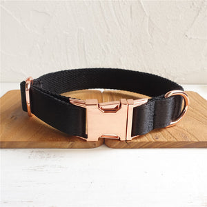 FlashLux Premium Rose Gold Collar & Leash