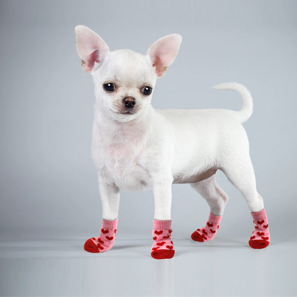 NomadDog Knitted Socks