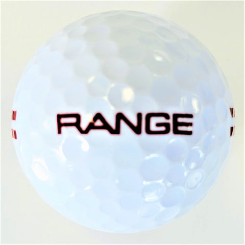 BA290W Two Piece Driving Range Golf Ball White Full Flight