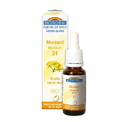 No21 Moutarde 20Ml