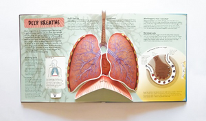 Anatomy of The Human Body in English Popular Science Book 3D Picture Book